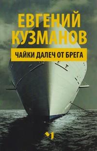 Чайки далеч от брега — Евгений Кузманов (корица)